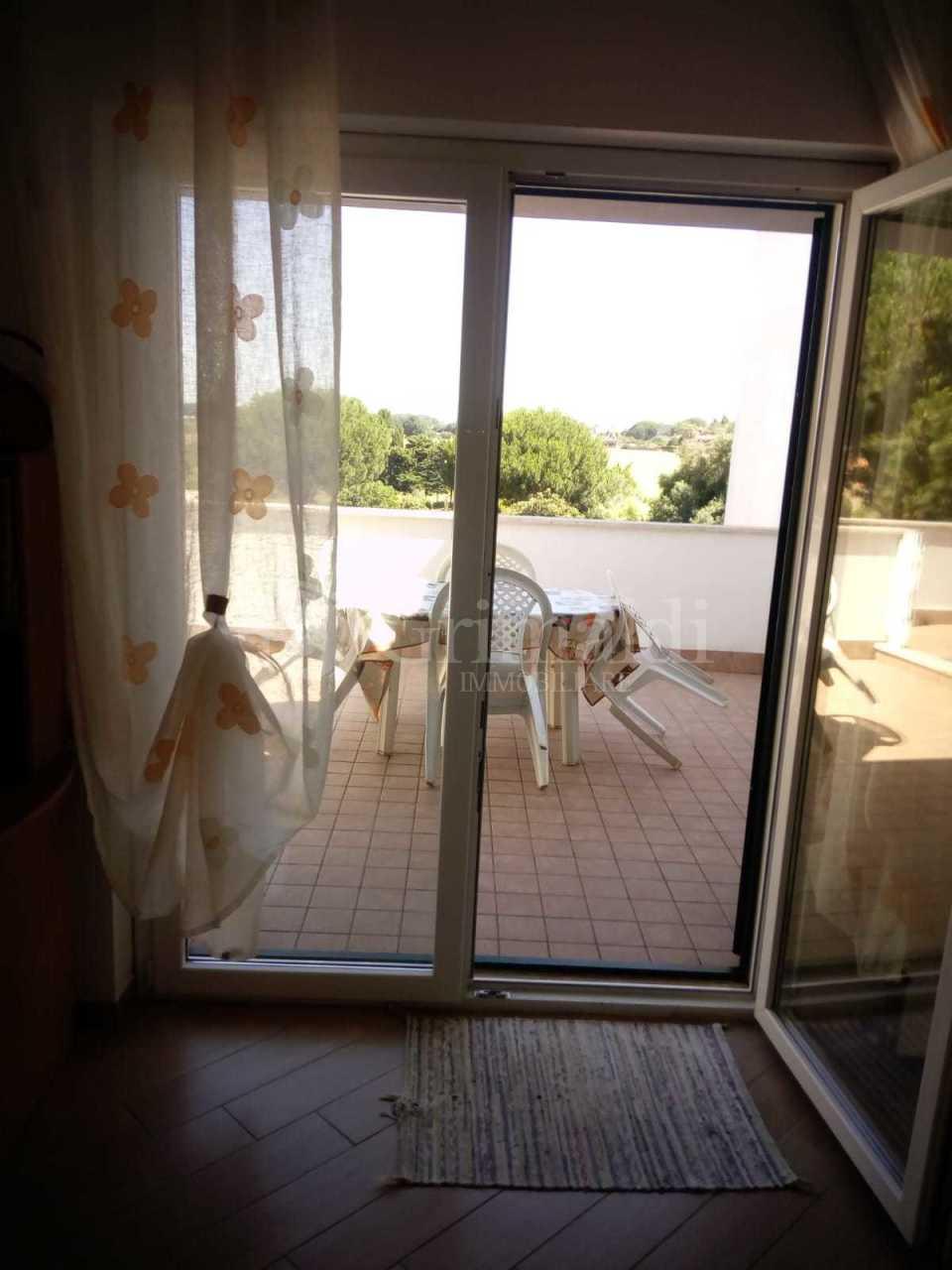 Appartamento in buone condizioni arredato in affitto Rif. 10980005