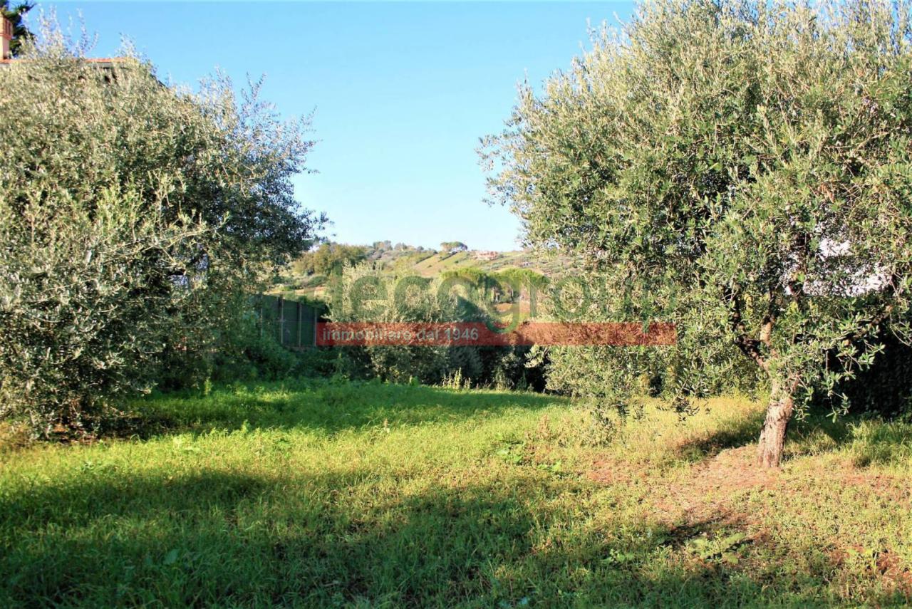 Agricolo a Monterotondo, Livorno Rif. 9679590