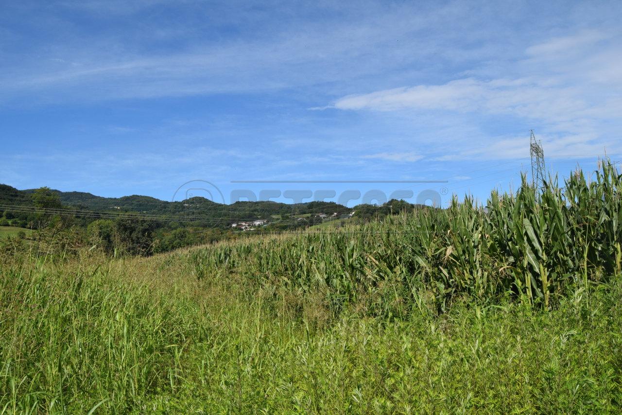 Terreno Agricolo in vendita a Malo, 1 locali, prezzo € 15.000 | CambioCasa.it