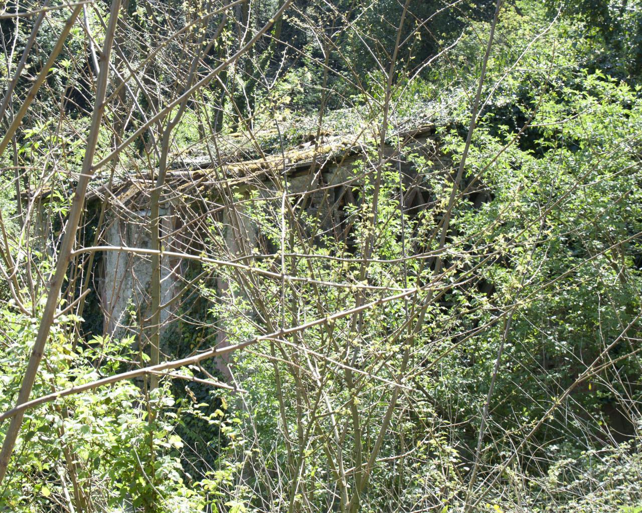 Casa colonica Lucca Pozzuolo IA00877 img 5