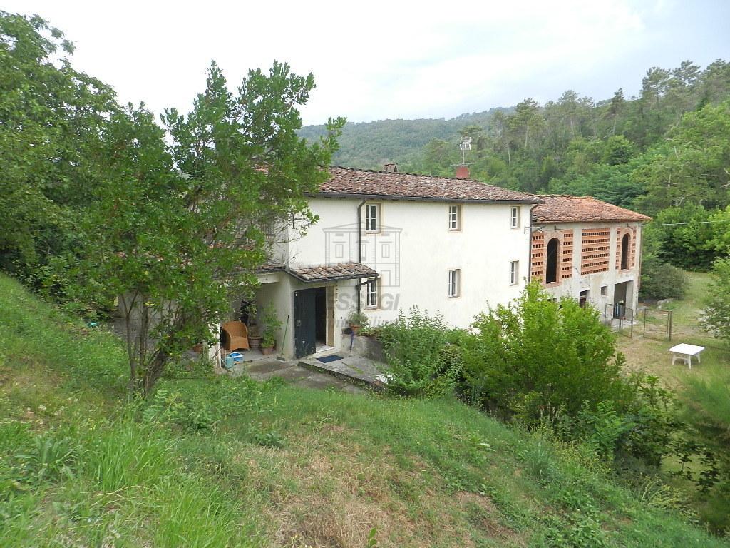 Casa colonica Lucca S. Macario IA03369 img 3
