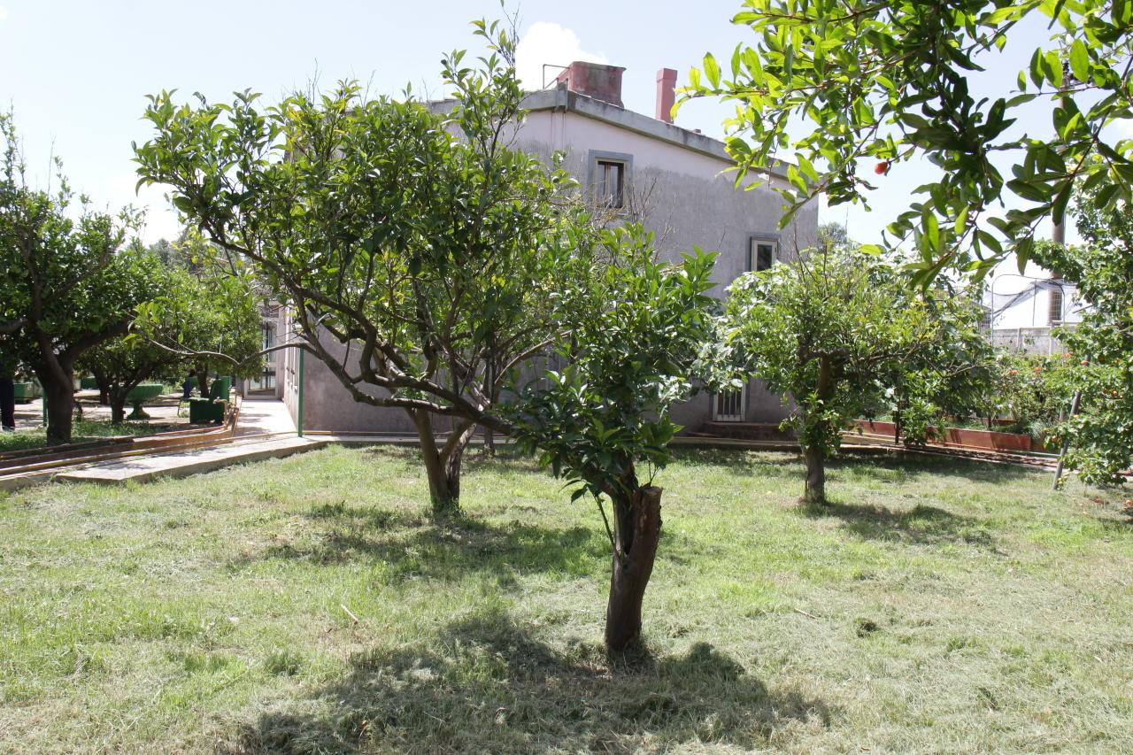 Villa in buone condizioni in vendita Rif. 7082035