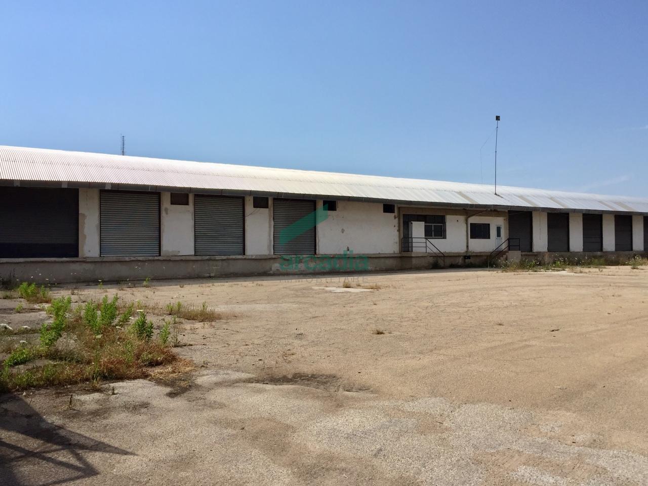 Capannone - Logistica a Zona Industriale, Modugno Rif. 7068846