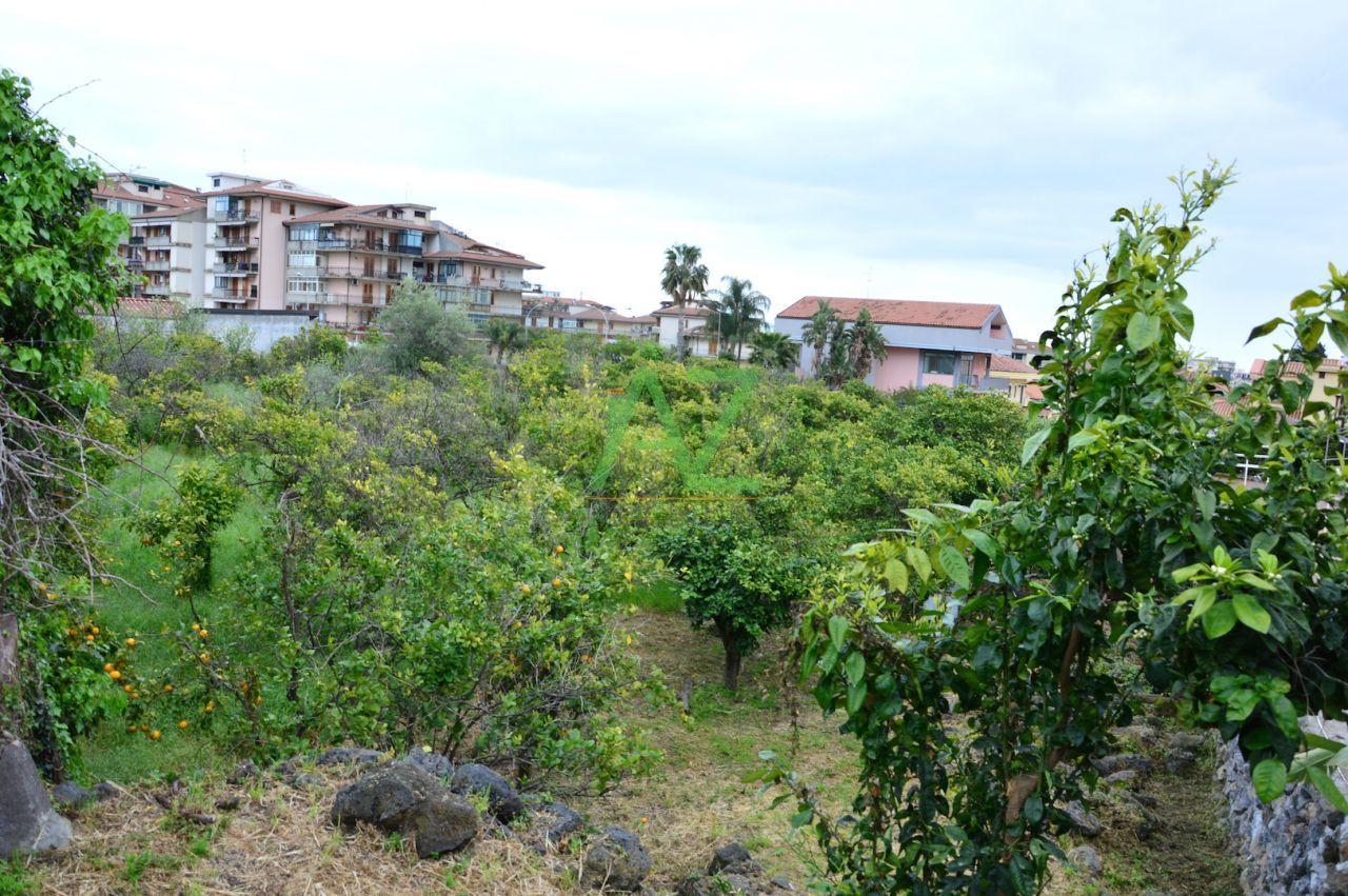 Agricolo a Centro, Acireale Rif. 9787119