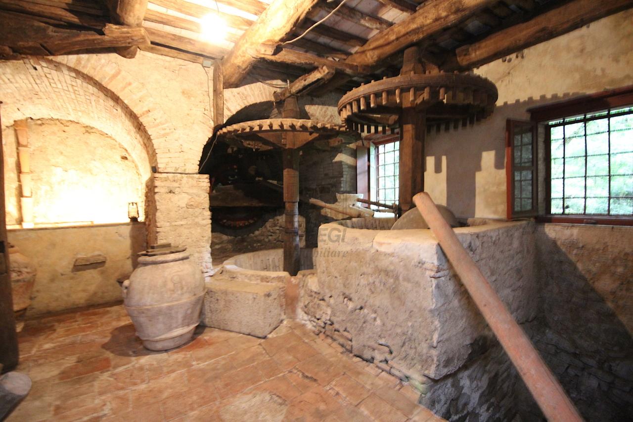 Casa colonica Camaiore IA03348 - B img 7