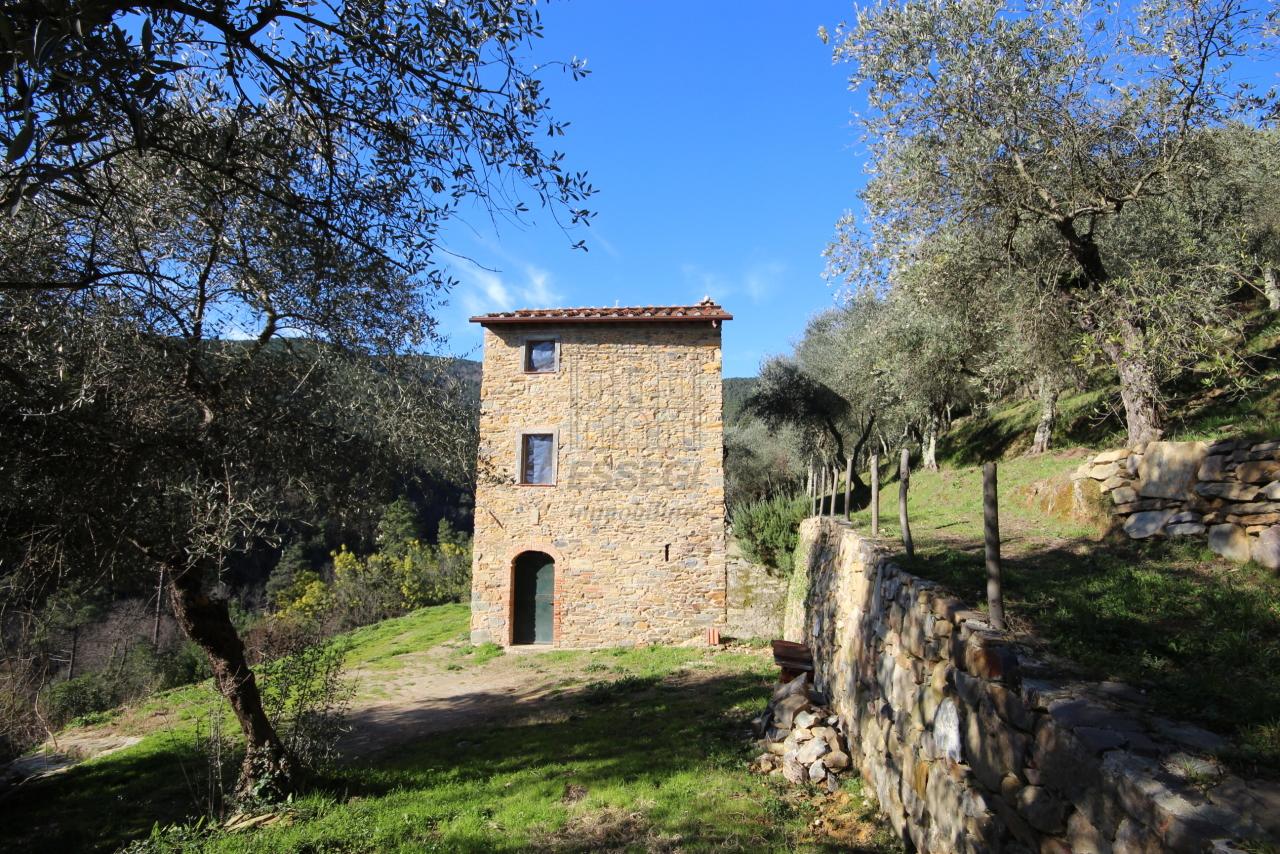 Casa colonica Capannori Castelvecchio di Compito IA00372 img 8