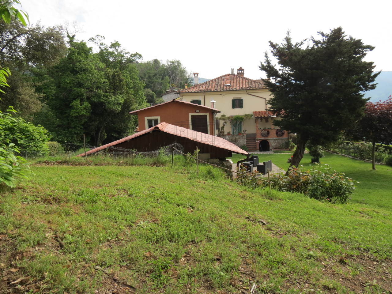 Casa colonica Lucca IA03133 img 3