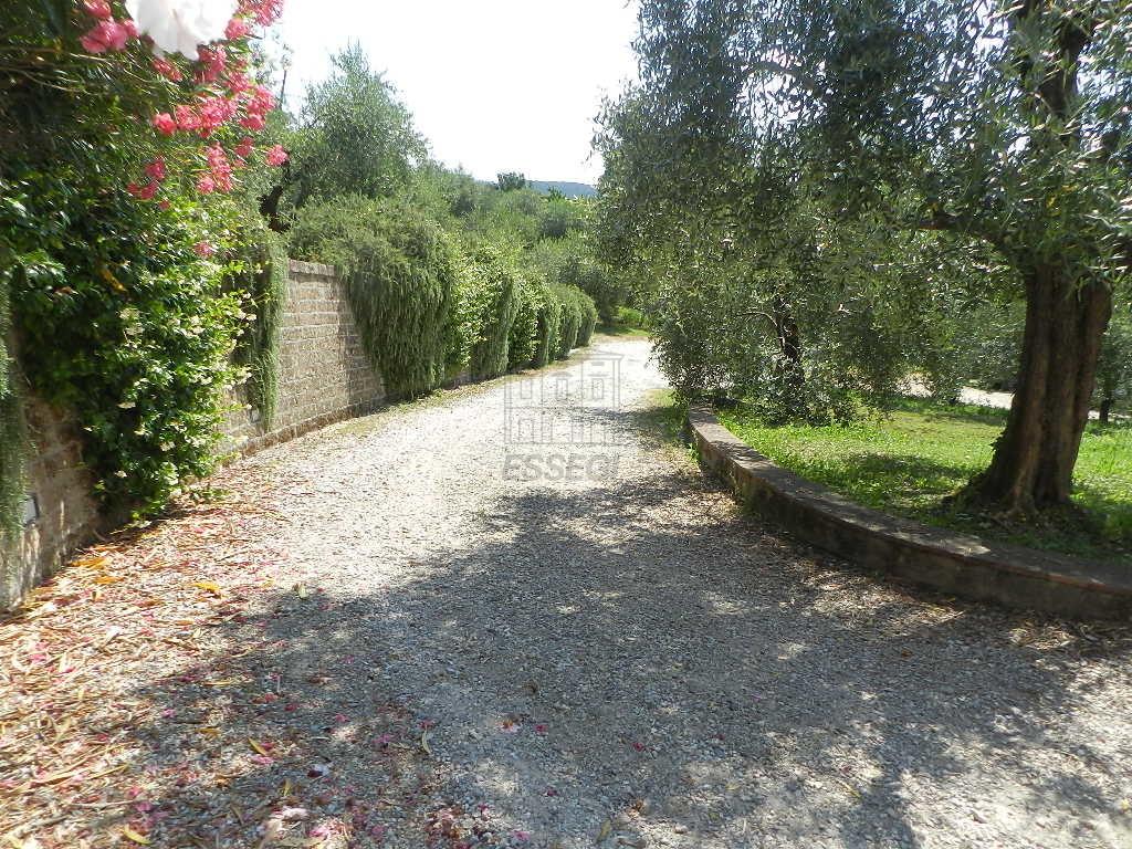 Appartamento Lucca Trecancelli IA03487 img 7