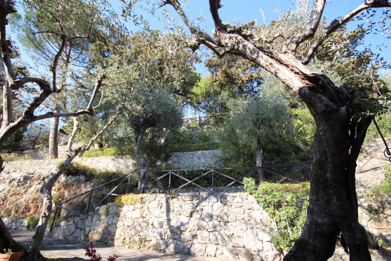 Villa singola Camaiore Capezzano Pianore IA03306 img 24