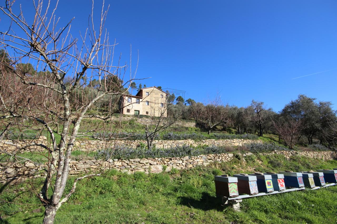 Casa colonica Capannori Castelvecchio di Compito IA00372 img 3
