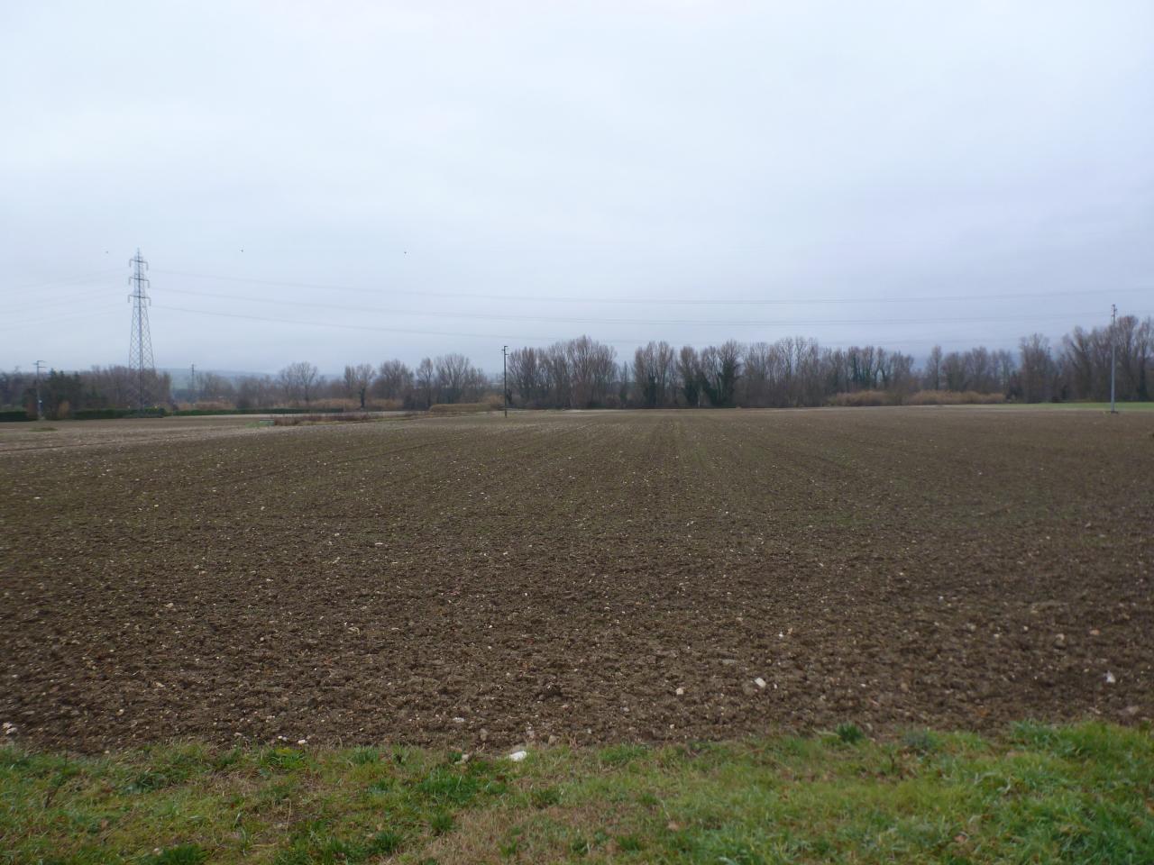 TERRENO AGRICOLO a PANTIERE, Castelbellino