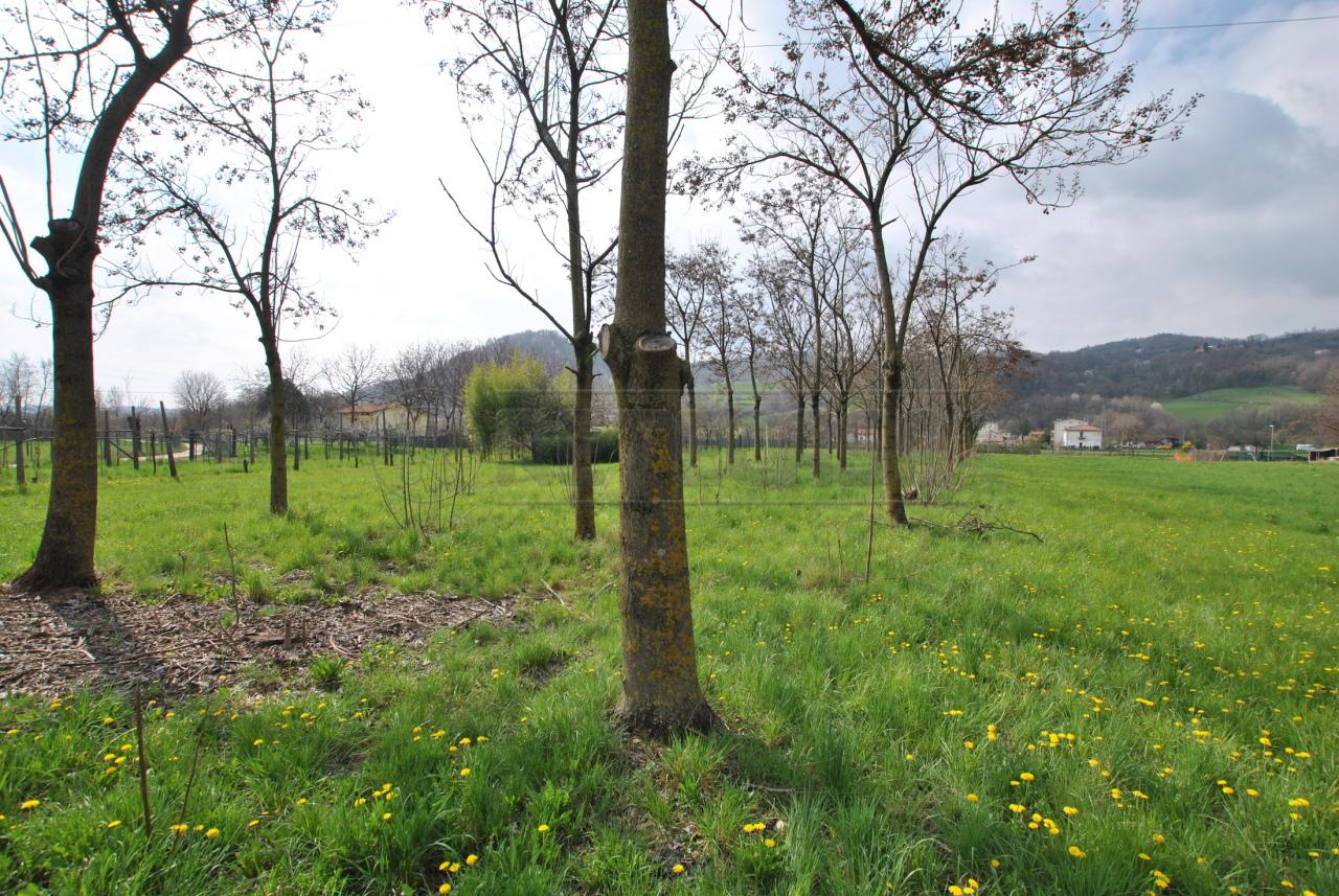 Terreno Agricolo in vendita a Cornedo Vicentino, 1 locali, prezzo € 20.000 | CambioCasa.it