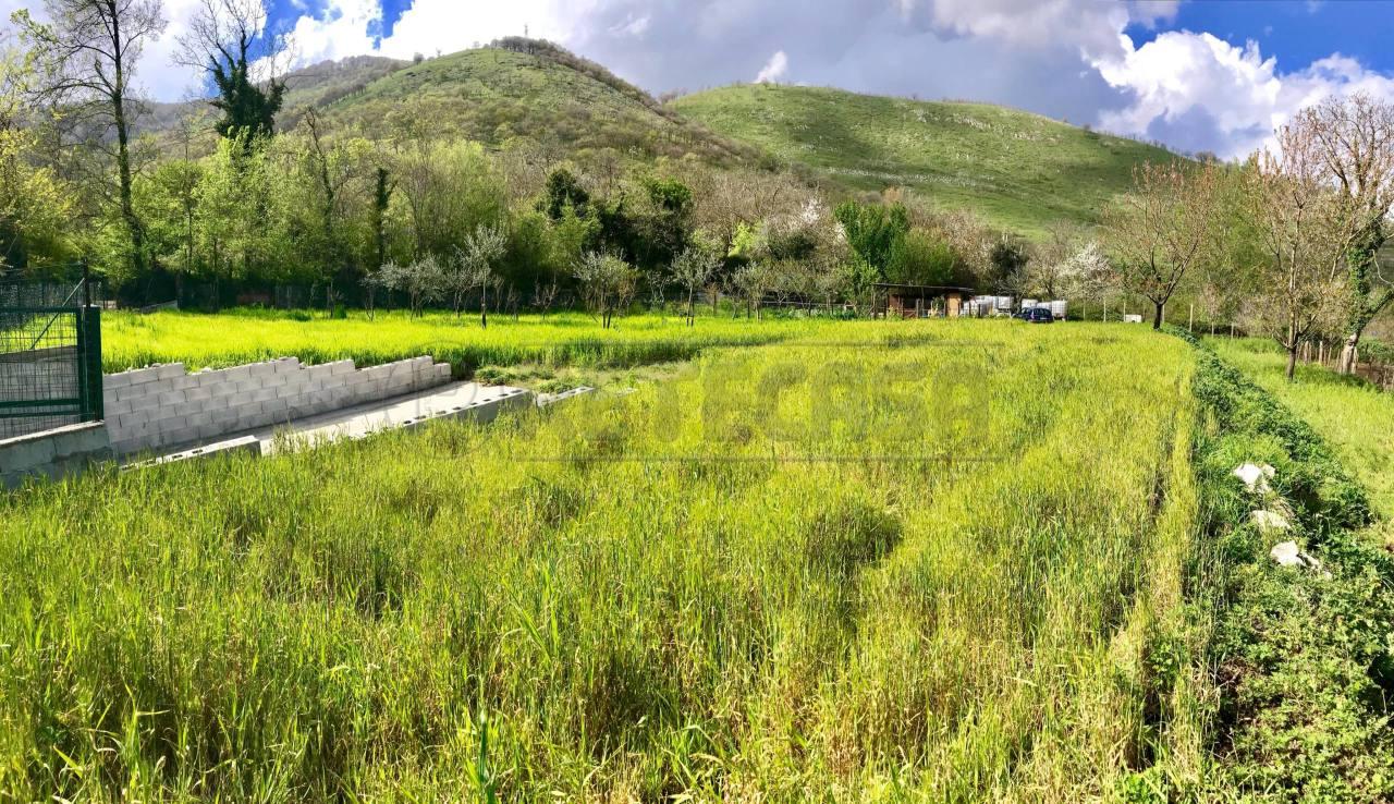 Agricolo - Seminativo a Castel San Giorgio Rif. 6050717