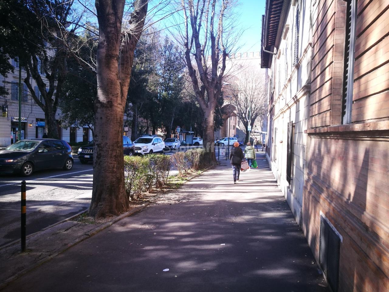 Fondo/negozio - 1 vetrina/luce a Antiporto, Siena