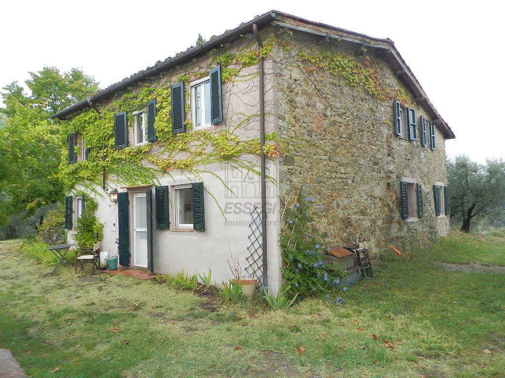 Casa colonica Lucca S. Michele di Moriano IA03418 img 7