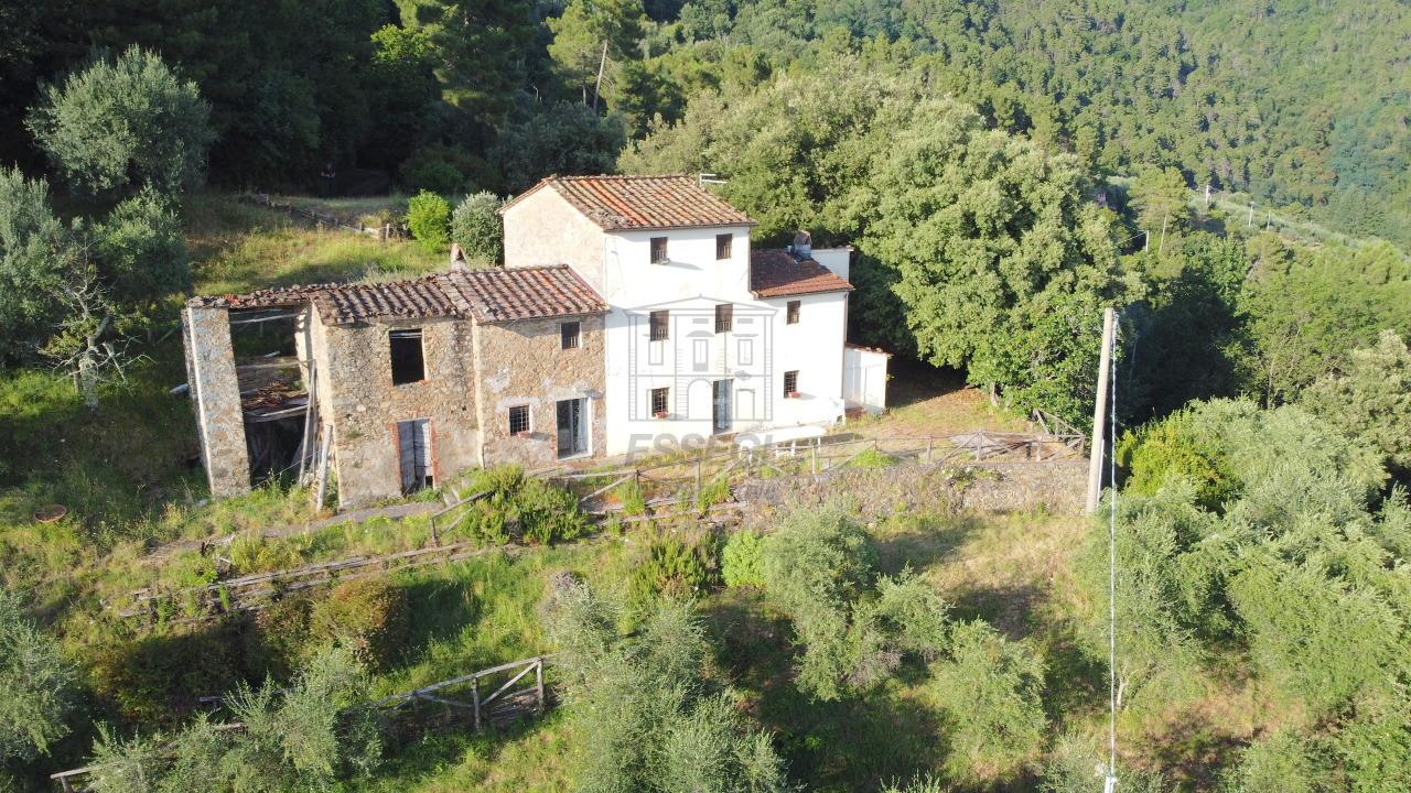 Casa colonica Lucca Ponte a Moriano IA00534 img 44