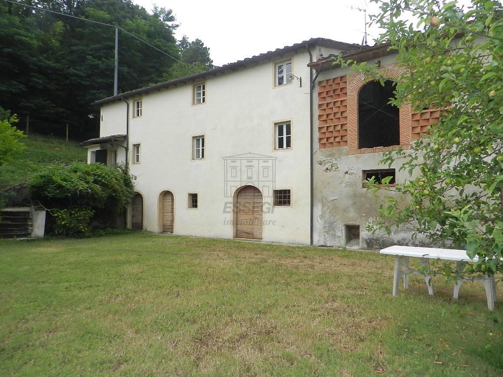 IA03369 Lucca S. Macario