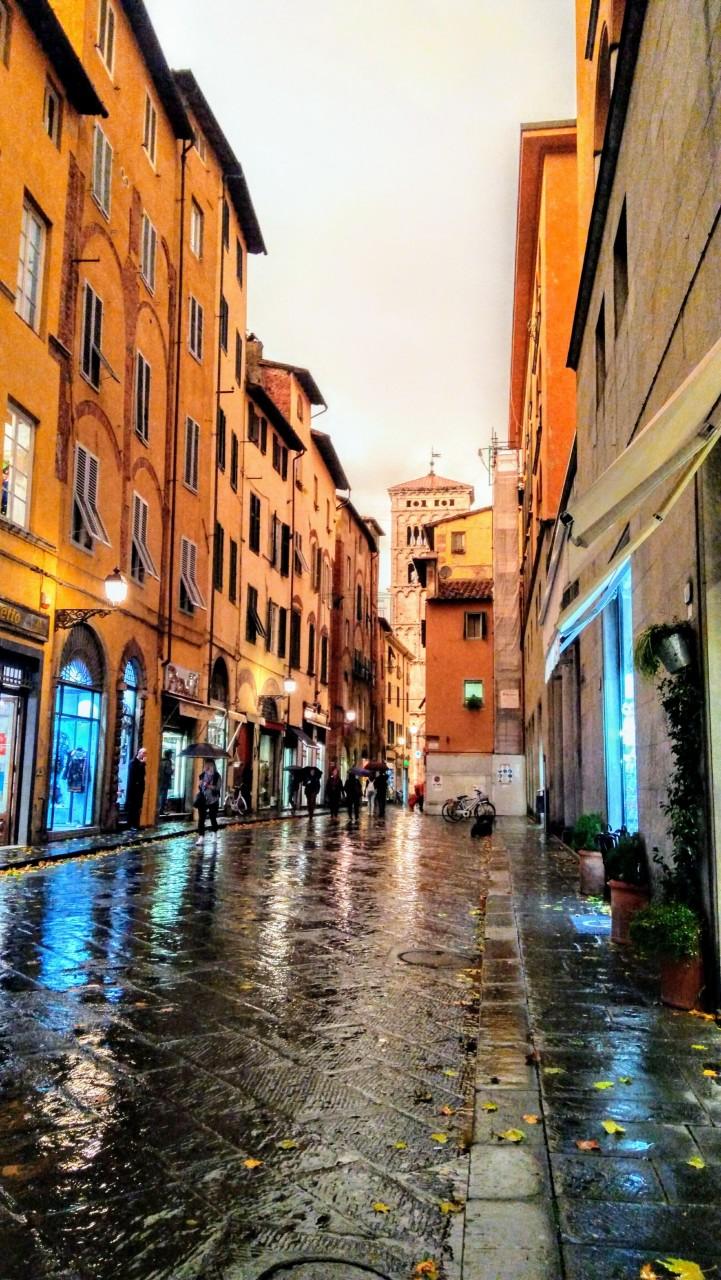 Ristorante Lucca AC00365 img 5