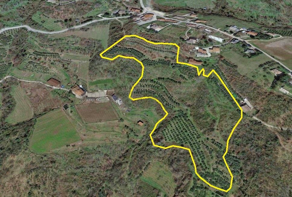 Terreno Agricolo in vendita a Roncà, 1 locali, prezzo € 120.000 | CambioCasa.it
