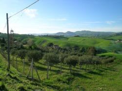 Terreno agricolo in Vendita a Caltanissetta, zona c/da Abbazia Santuzza, 20'000€, 7500 m²