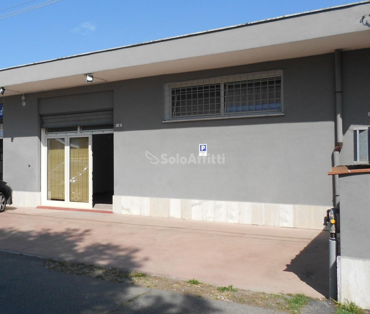 Fiumicino - Isaol Sacra, negozio