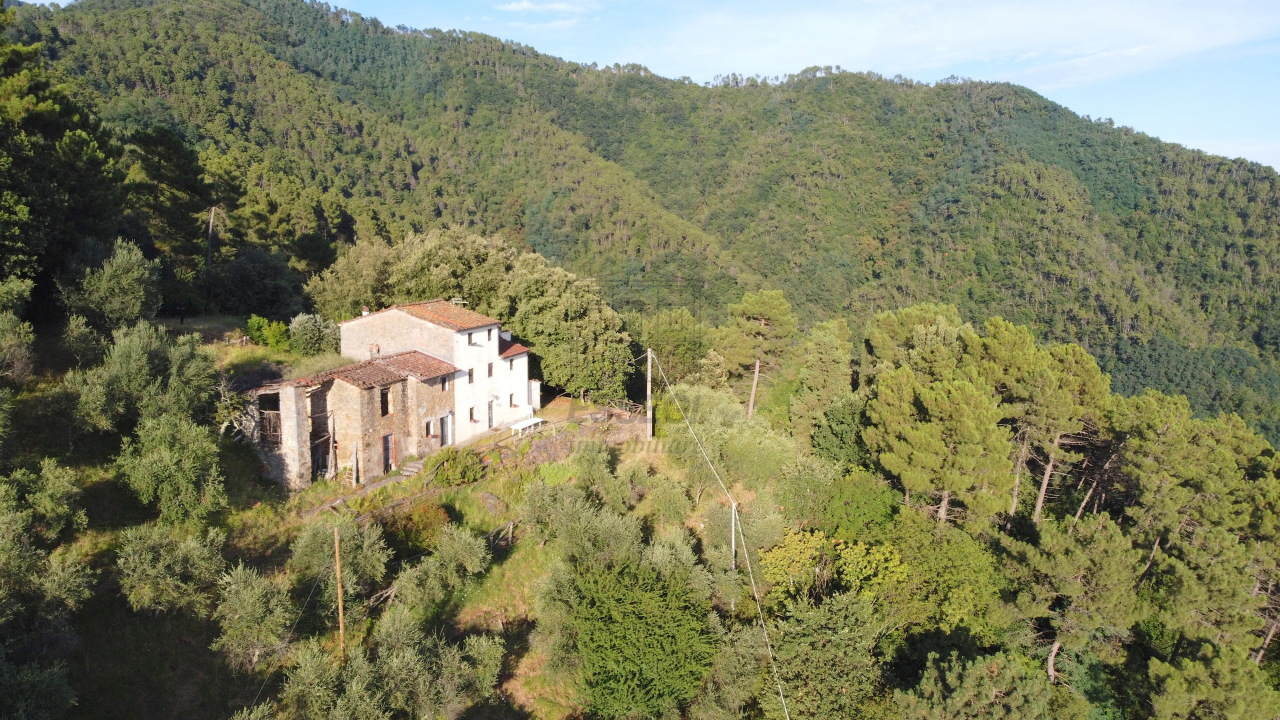 Casa colonica Lucca Ponte a Moriano IA00534 img 47
