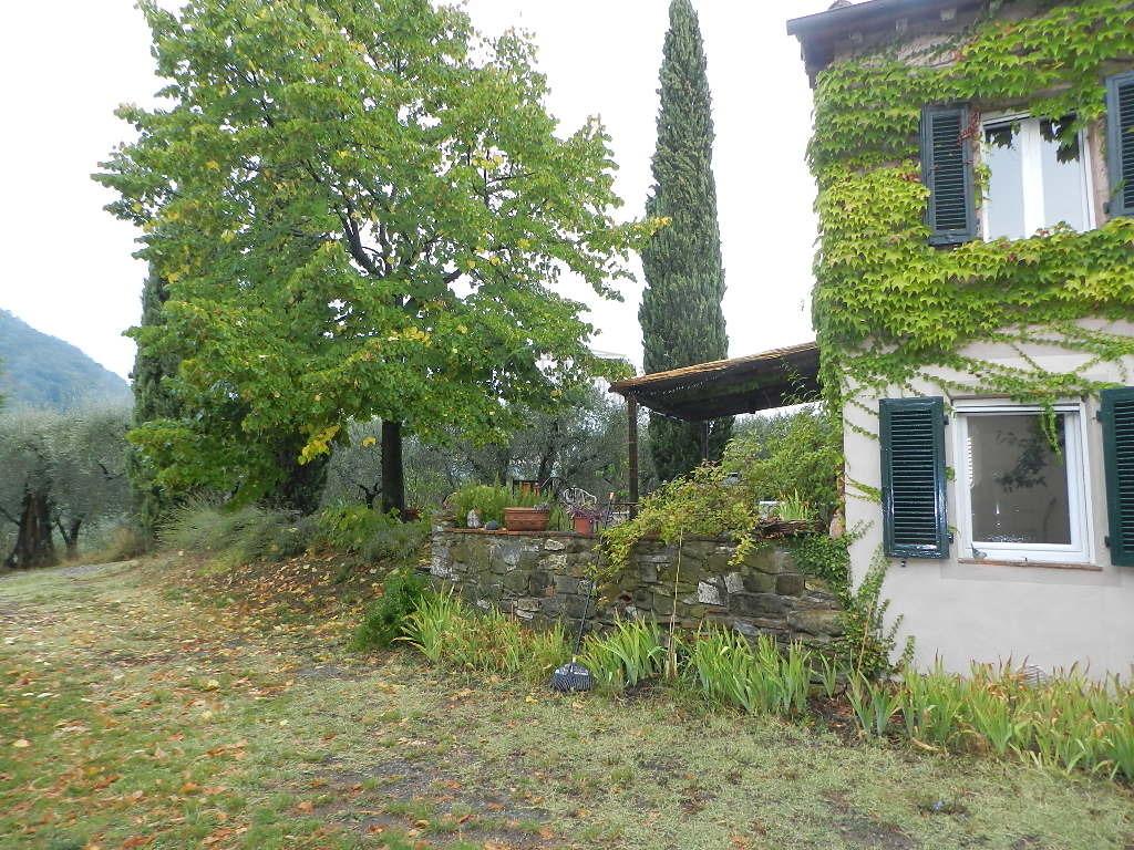 Casa colonica Lucca S. Michele di Moriano IA03418 img 6