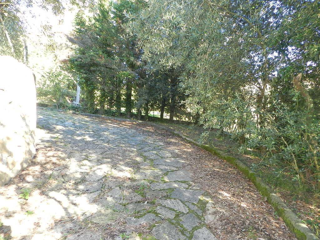 Villa singola Lucca Chiatri IA03430 img 4