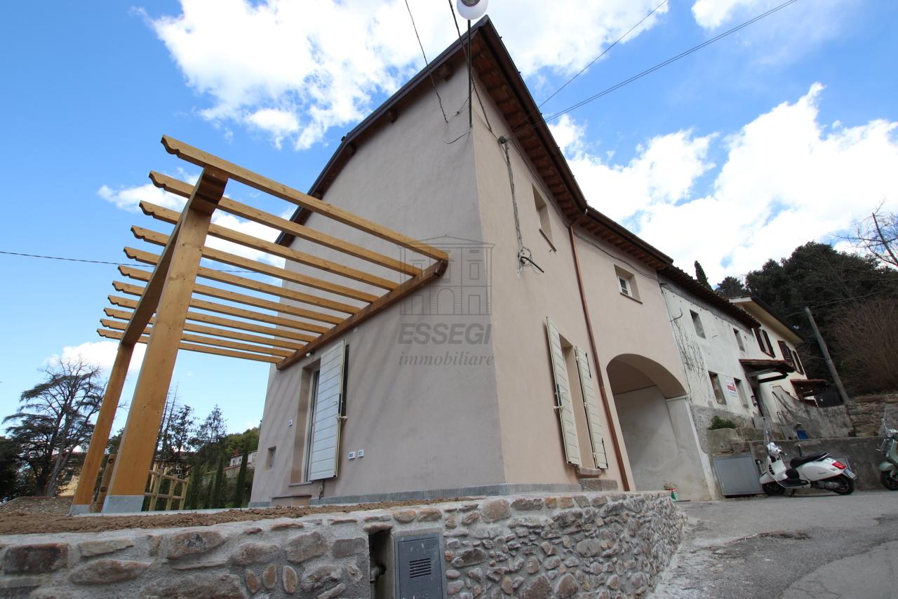 Terratetto Capannori Badia di Cantignano IA01359 img 7