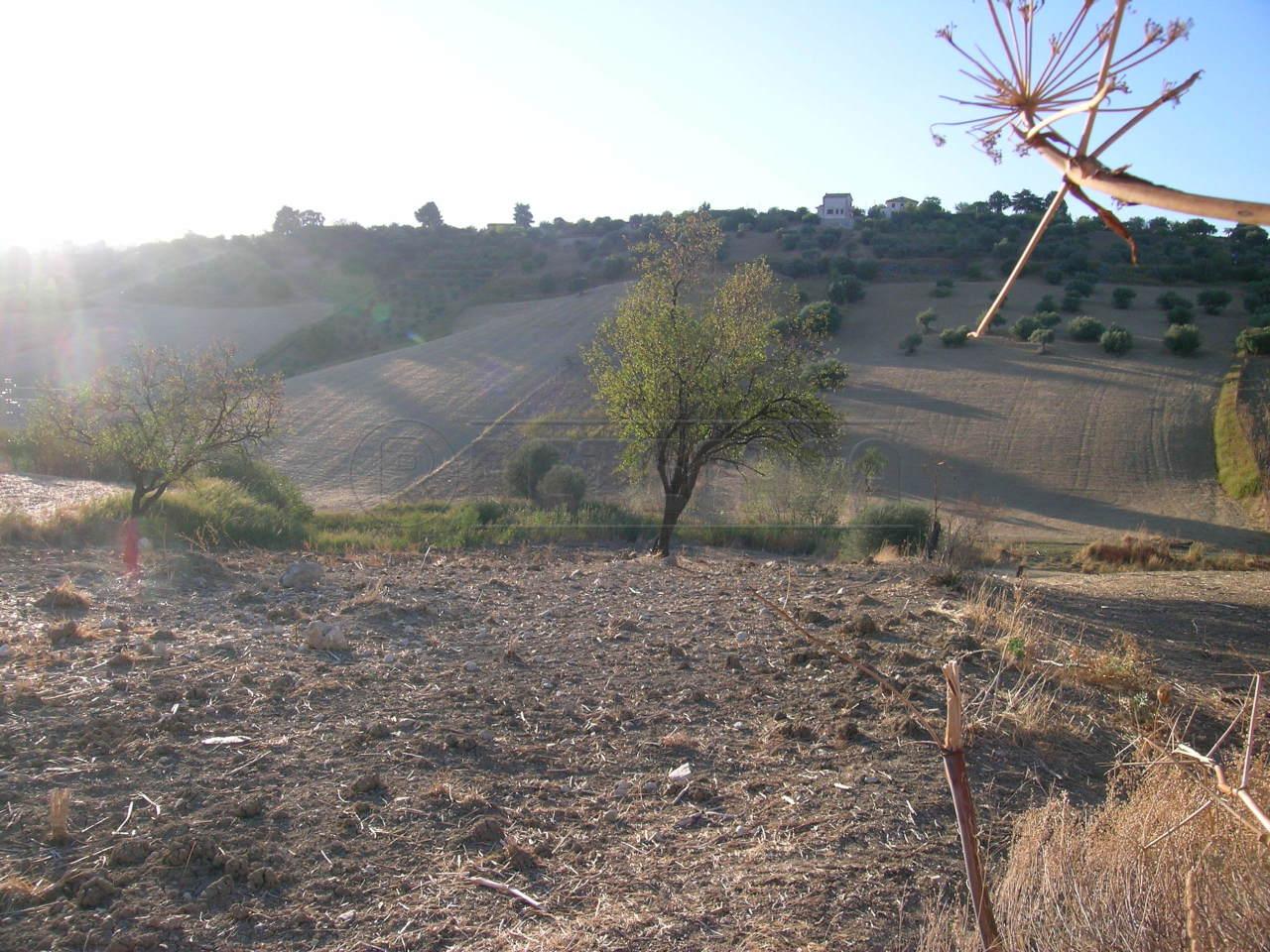 Agricolo - Seminativo a Caltanissetta Rif. 4128232