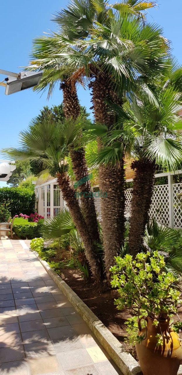 Casa Indipendente in buone condizioni in vendita Rif. 9670662