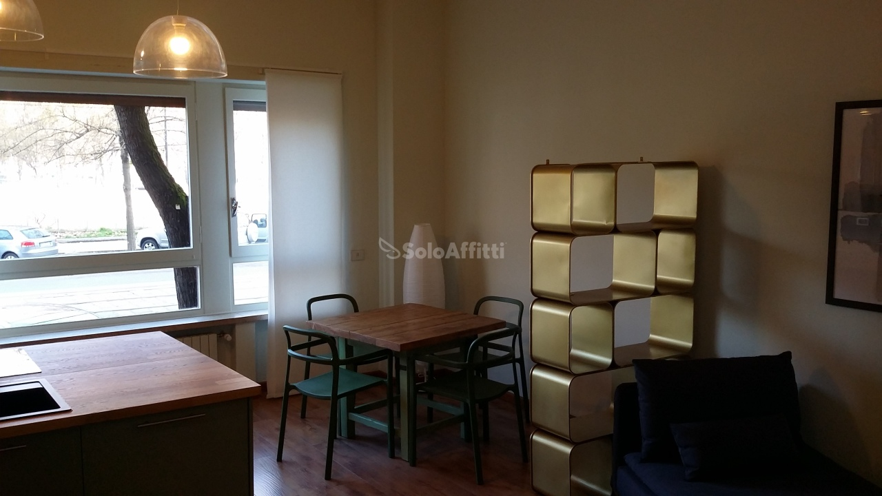 Bilocale in ottime condizioni arredato in affitto Rif. 11237934