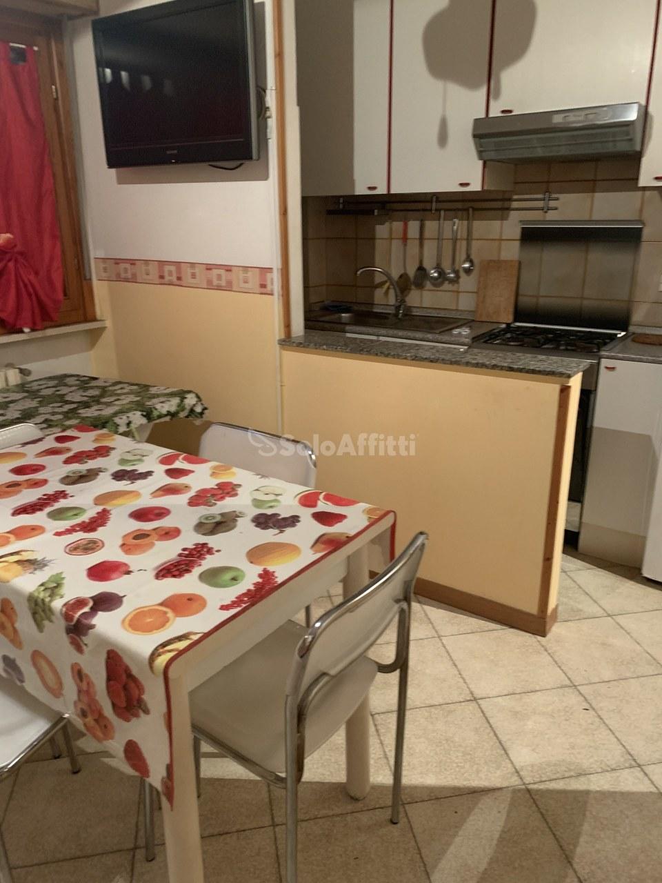 Bilocale in buone condizioni arredato in affitto Rif. 12134830