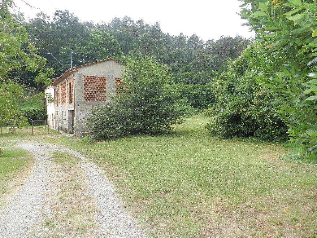Casa colonica Lucca S. Macario IA03369 img 14