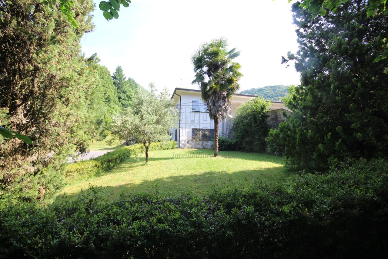 Villa singola Camaiore IA00988 img 4