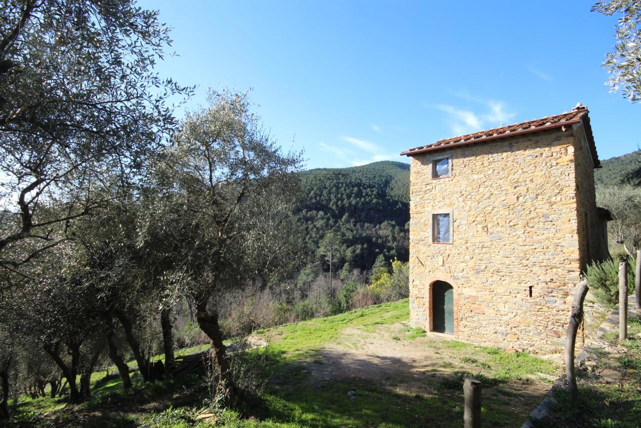 Casa colonica Capannori Castelvecchio di Compito IA00372 img 9