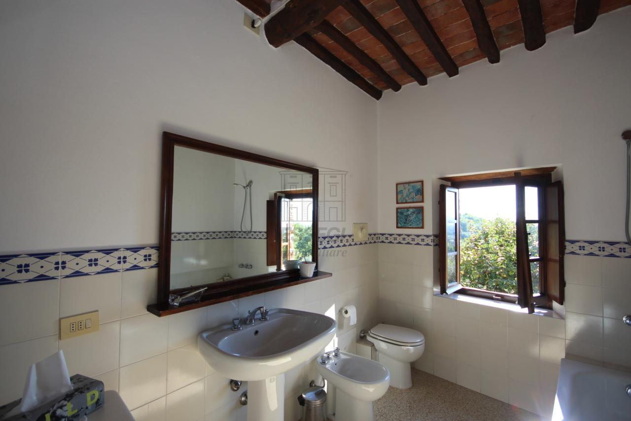 Casa colonica Lucca S. Michele di Moriano IA03149 - b img 17