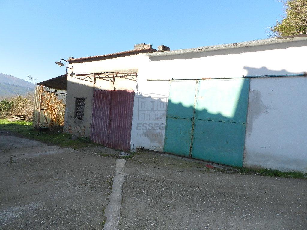 Terratetto Capannori Colognora di Compito IA03002 img 38