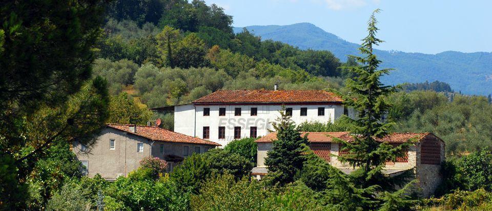 IA00412 Lucca S. Concordio di Moriano