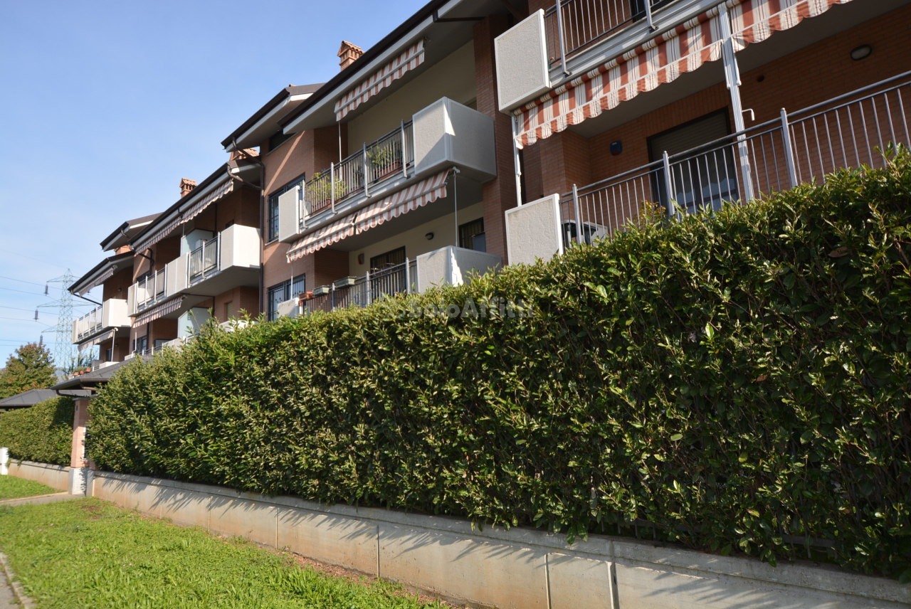 Bilocale in ottime condizioni arredato in affitto Rif. 11511918