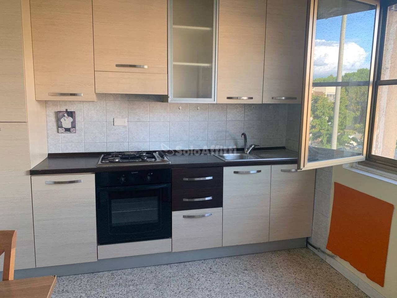 Bilocale in buone condizioni arredato in affitto Rif. 11077282