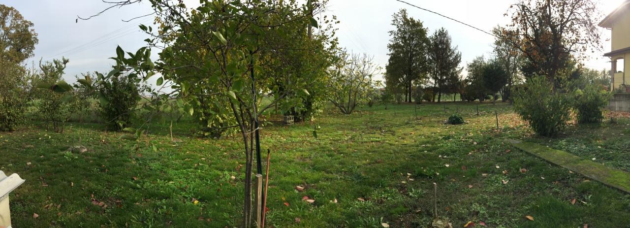 Terreno in vendita Rif. 7702985