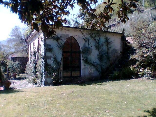 Villa antica Lucca IA00001 img 8