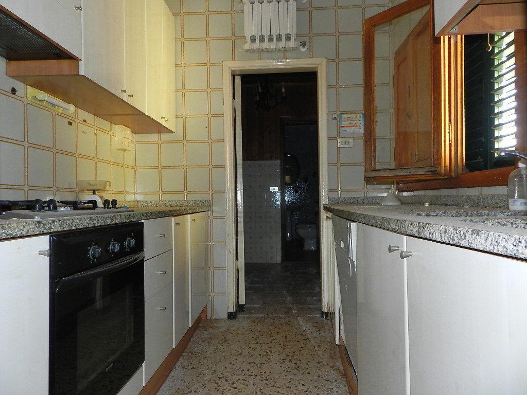 Terratetto Capannori Colognora di Compito IA03002 img 10
