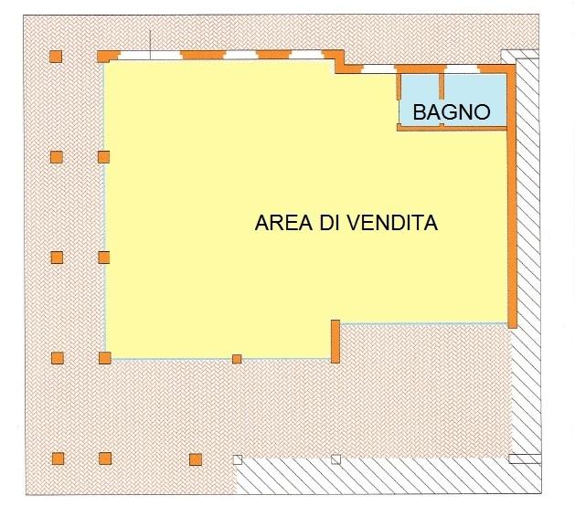 plani colorata N540.jpg