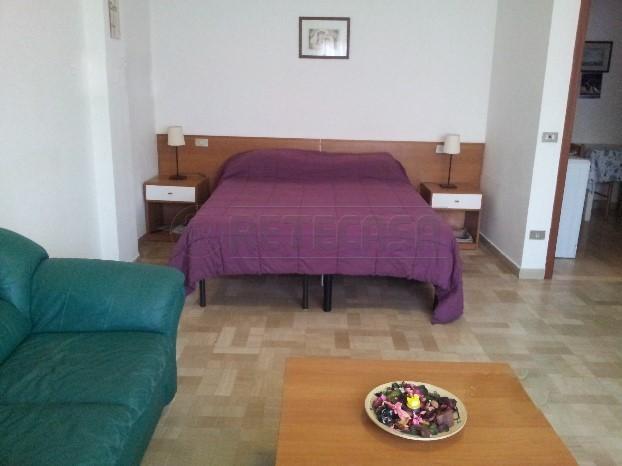 Bilocale in buone condizioni arredato in affitto Rif. 8729790