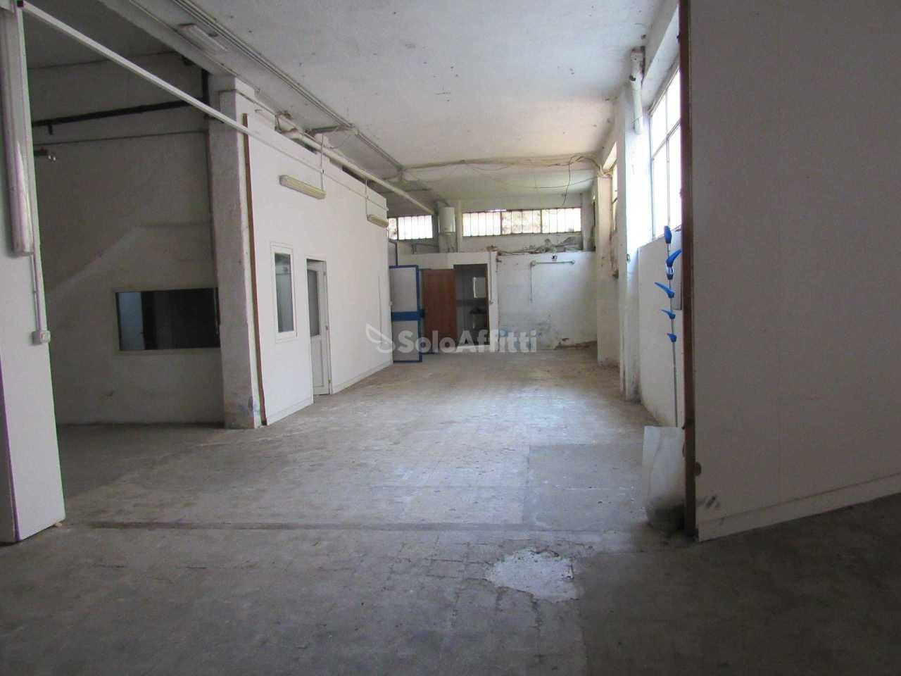 Laboratorio a Frascati Rif. 11021600