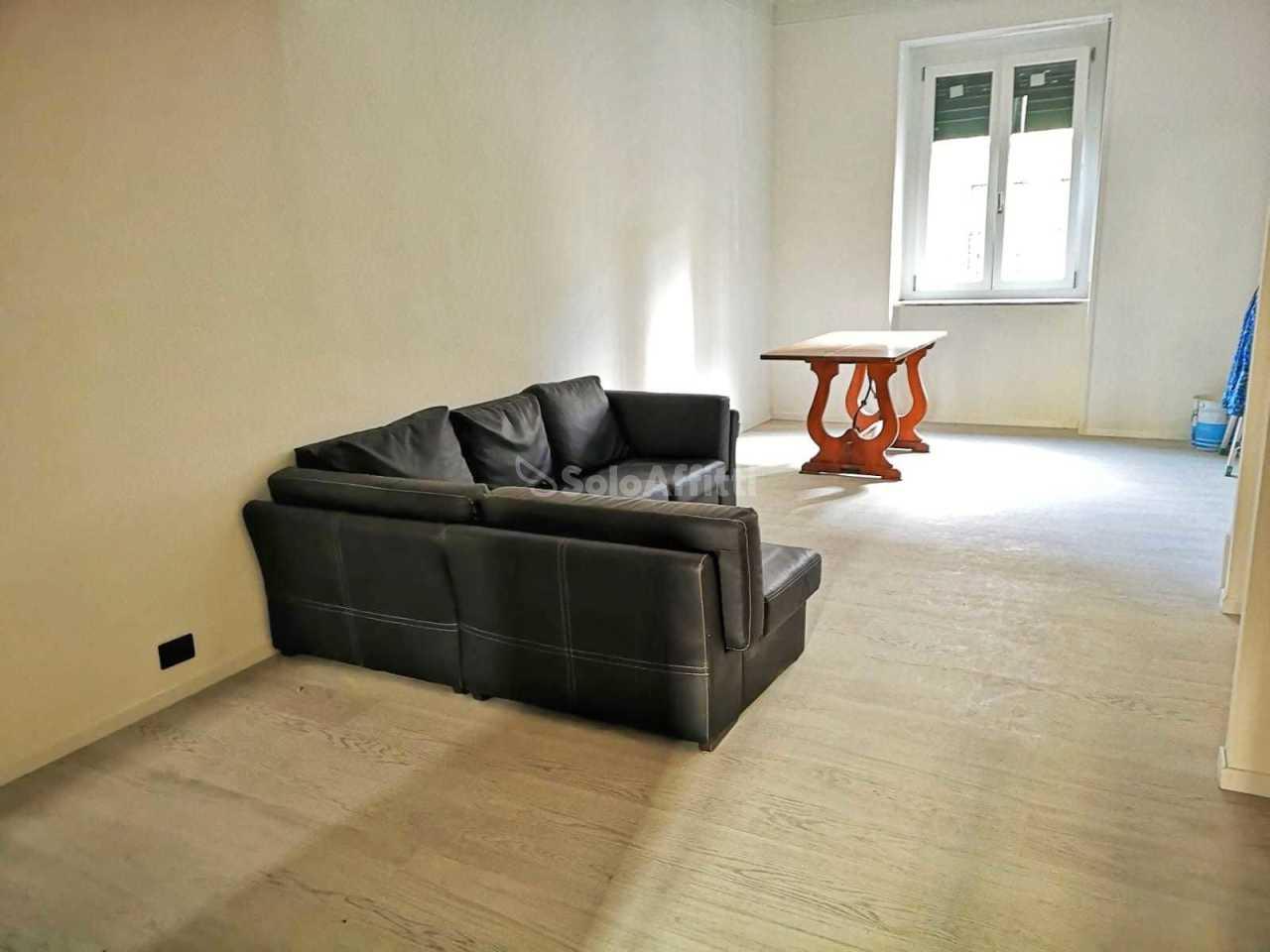 Trilocale ristrutturato arredato in affitto Rif. 9871369