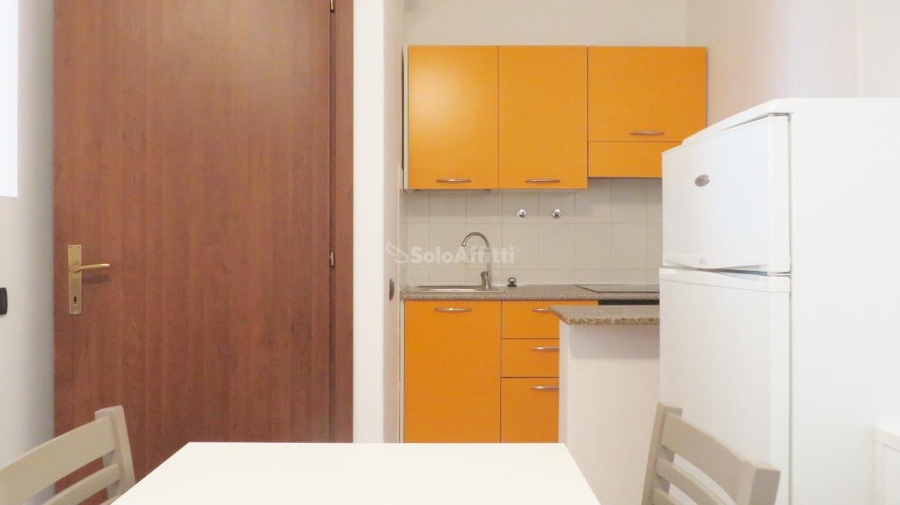 Monolocale in buone condizioni arredato in affitto Rif. 11710626