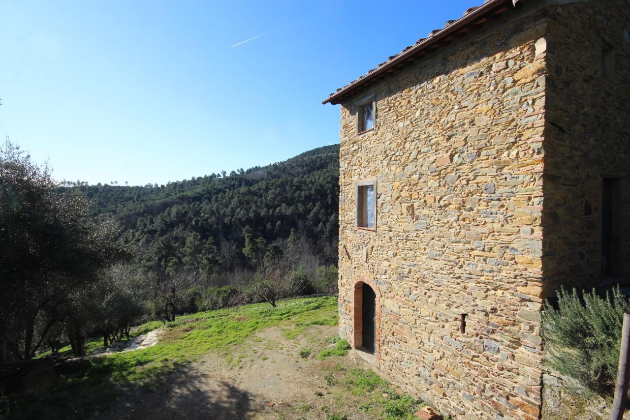 IA00372 Capannori Castelvecchio di Compito
